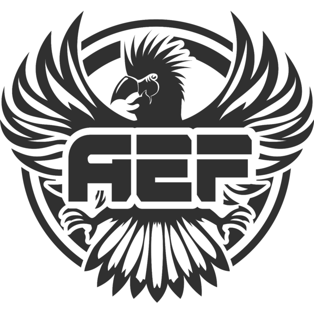 AEF Season 2 Finals
